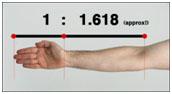 arm-ratios