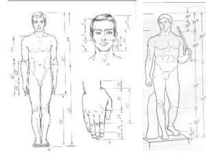 body-proportions